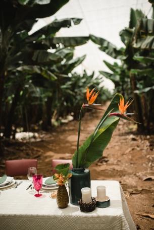 tropical_wedding_-47